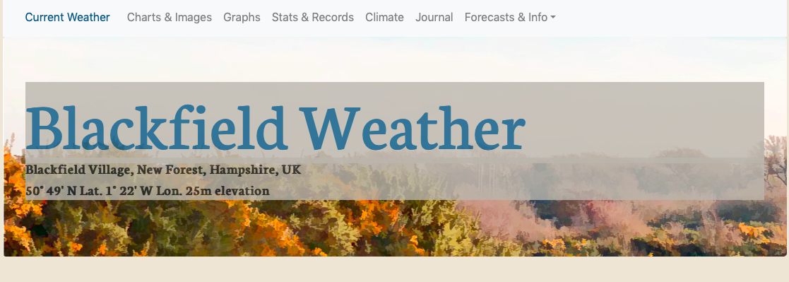 Blackfield Weather Website